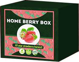 Home Berry Box Che cos'è?